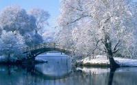 bridge_over_pond_in_winter